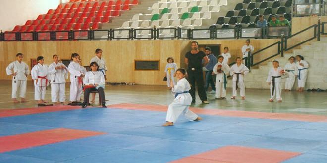 250 لاعبا ولاعبة في مركز نادي تشرين لتدريب الكاراتيه