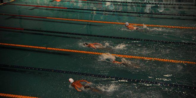 دورة تدريبية لتعليم السباحة في الحسكة