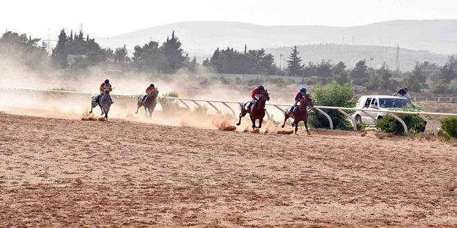 الجمعية السورية للخيول العربية الأصيلة تقيم سباق السرعة الدوري السادس