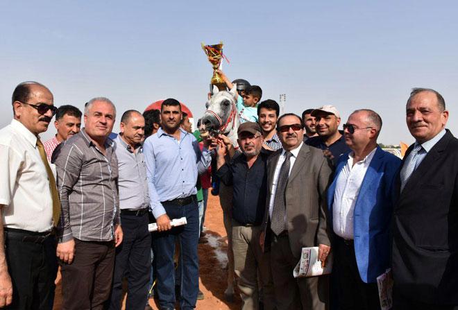 سباق للخيول العربية الأصيلة ضمن فعاليات مهرجان ربيع حماة
