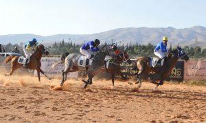 منافسات قوية في السباق الدوري الثالث للخيول العربية الأصيلة
